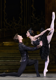 Royal Ballet: Swan Lake - Live